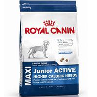 Royal Canin MAXI JUNIOR ACTIVE - корм для щенков крупных пород с высокими энергетическими потребностями