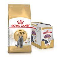 Royal Canin BRITISH SHORTHAIR 34 - корм для британских кошек, 10кг + 12*85г БЕСПЛАТНО