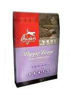 ORIJEN Puppy Large корм для щенков крупных пород, 6 кг