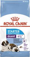 Royal Canin GIANT STARTER первый твердый корм для щенков гигантских пород