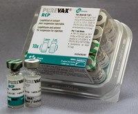 ПЮРВАКС RCP вакцина для котов ( панлейкопения, калицивироз, ринотрахеит)