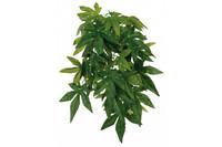 Растение для террариума TRIXIE - Abutilon,  D- 20 x 30 см