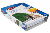 Трава для кошек 100 г, чашка