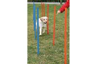 Тренировочные палки для собак TRIXIE - Слалом, 115х3,3см(12шт)