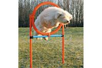 Сборный барьер-круг для собак TRIXIE, 115 x D- 3 см, D- 65 см.