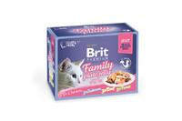 Влажный корм Brit Premium Набор паучей для кошек Family Plate Jelly Кусочки в желе 12x85 г